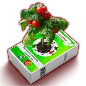Домашние свежие овощи